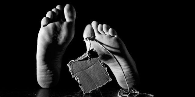 Kecelakaan Kerja di KID Sudah Berulang Terjadi, Disnaker Minta PT Wilmar Siapkan Tenaga Pengawas K3